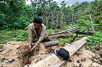 Farmer planting a seedling in an area of cleared forest, nr Makassar, Sulawesi, Indonesia.  The seedlings are used to prevent soil run off into an important water source.