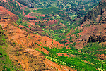 Waimea Canyon from Pu'u Ka Pele Lookout, Island of Kauai, Hawaii