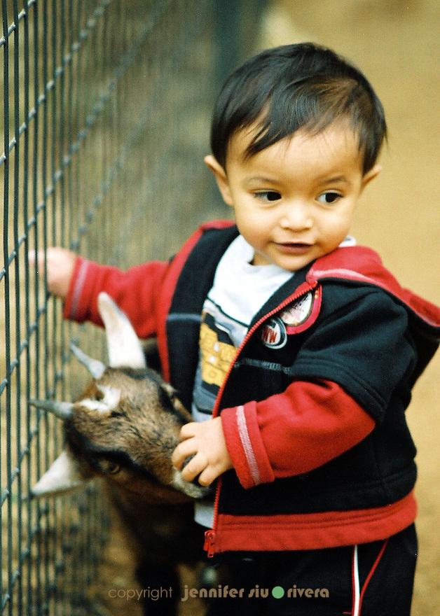 Model - Lael Akan Rivera, 1 year old. Petting zoo at San Antonio Zoo.
