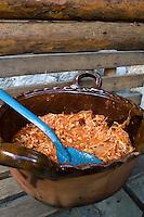 Tinga de pollo. Lunch in an orchrd in Zacatlan de las Manzanas, Puebla, Mexico.