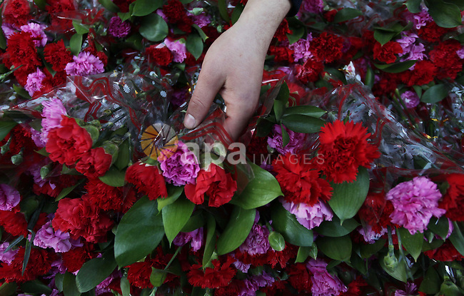 A Palestinian vendor displays roses at his store ahead of Valentine's day in Gaza City on February 12, 2014. Valentine's Day is increasingly popular among younger Palestinians, many of whom have taken up the custom of giving cards, chocolates and gifts to their sweethearts to celebrate the occasion. Photo by Ashraf Amra