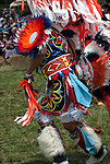 Ethnic Pride heritage celebration Native American Pow Wow competition.