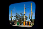 Iconography of Arizona.  My Diving Bell Series