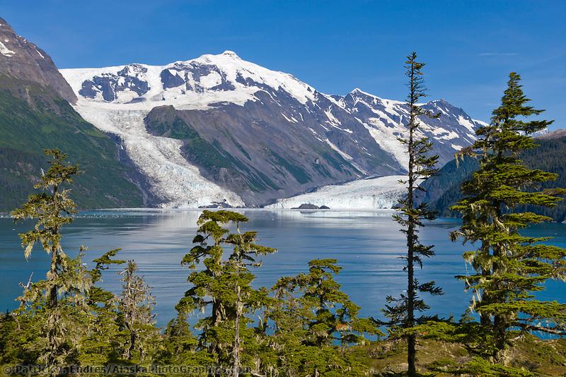 Mount Gannet of the Chugach mountains, Cascade and Barry glaciers flow into Barry Arm, Chugach National Forest, Prince William Sound, Alaska.