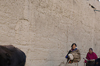 A tibetan nomadic is guiding her cows through the tibetan part of the town of Xiahe, near the Labrang monastery.