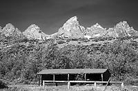 Old log cabin, Grand Teton Park