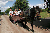 Horses are used both for transport, in agriculture and for rehabilitation of inmates...Bast&oslash;y Prison/Horten/Norway. &copy;Fredrik Naumann/Felix Features