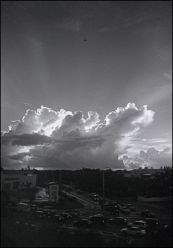 From &quot;Miami in Black and White&quot; series<br /> South Miami, FL