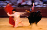 The movement of the Bullfight in Seville,Spain