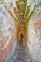 Domos (entrance corridor) to an Etruscan tumulus tomb cut into Tuff volcanic , 6th century BC,  Necropoli della Banditaccia, Cerveteri, Italy. A UNESCO World Heritage Site