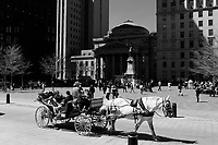 PLace d'armes in Old-Montreal<br /> <br /> Photo : <br /> Pierre Roussel - Agence Quebec Presse