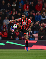 Bournemouth's Joshua King in action during todays match  <br /> <br /> Bournemouth 2 - 0 Swansea<br /> <br /> Photographer David Horton/CameraSport<br /> <br /> The Premier League - Bournemouth v Swansea City - Saturday 18th March 2017 - Vitality Stadium - Bournemouth<br /> <br /> World Copyright &copy; 2017 CameraSport. All rights reserved. 43 Linden Ave. Countesthorpe. Leicester. England. LE8 5PG - Tel: +44 (0) 116 277 4147 - admin@camerasport.com - www.camerasport.com