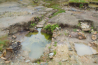 SAVEOCK WATER, CORNWALL, ENGLAND - AUGUST 03: A general view of Neolithic spring and winter pools on August 3, 2008 in Saveock Water, Cornwall, England. Excavated by archaeologist Jacqui Wood and her team. (Photo by Manuel Cohen)