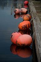 Pink Bumper Buoys, Kodiak Island, Alaska, US