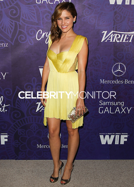 WEST HOLLYWOOD, CA, USA - AUGUST 23: Actress Sophia Bush arrives at the Variety And Women In Film Annual Pre-Emmy Celebration 2014 held at Gracias Madre on August 23, 2014 in West Hollywood, California, United States. (Photo by Celebrity Monitor)