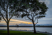 Trees frame a slice of sunset along San Francisco Bay at San Leandro Marina Park.  On the horizion, golden sunset light hovers over the Santa Cruz Mountains that separate the bay from the Pacific Ocean.