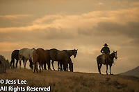 Early morning Cowboys working and playing. Cowboy Cowboy Photo Cowboy, Cowboy and Cowgirl photographs of western ranches working with horses and cattle by western cowboy photographer Jess Lee. Photographing ranches big and small in Wyoming,Montana,Idaho,Oregon,Colorado,Nevada,Arizona,Utah,New Mexico.