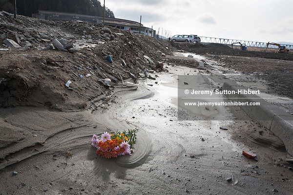 Flowers mark the spots where homes once stood and where people died in the 2011 tsunami, in the muddy plain where once stood the community of Kamaya, on the 1 year anniversary of the March 11th 2011 earthquake and tsunami, in Kamaya, Tohoku region, Japan on Sunday 11th March 2012.