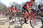 The peloton including Loic Vliegen (BEL) BMC Racing Team tackle the famous cobbled climb of Kemmelberg during Gent-Wevelgem in Flanders Fields 2017 running 249km from Denieze to Wevelgem, Flanders, Belgium. 26th March 2017.<br /> Picture: Eoin Clarke | Cyclefile<br /> <br /> <br /> All photos usage must carry mandatory copyright credit (&copy; Cyclefile | Eoin Clarke)