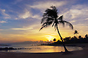 Sunset at Poipu Beach Park with palm tree and swimming cove; Poipu, Kauai, Hawaii.