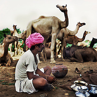 Gotam Raika sits before tending to his camels. The Raika are an ancestral caste of camel breeders in Rajasthan. Due to the increased cost of feeding and shelter, more and more Raika are being forced to sell off their camels, often for camel meat, which was once considered taboo.
