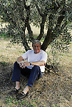 Peter Mayle under an olive tree near Lourmarin.