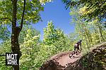 Marquette Trails Festival