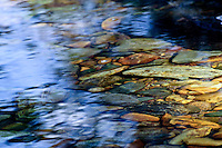 &quot;FIFTY FIFTY&quot;<br />