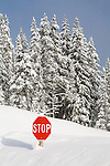 Deep snow in western Montana nearly covering the stop sign
