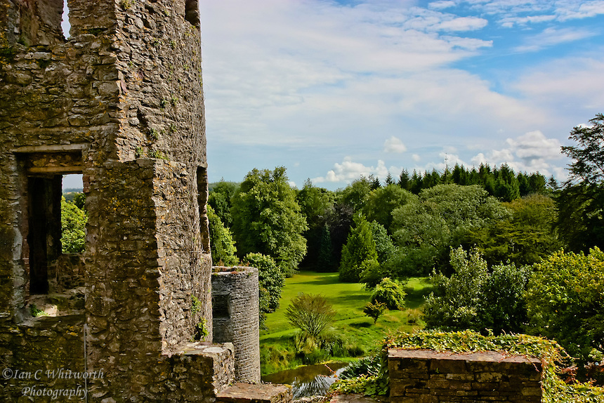 A view from Blarney Castle showing parts of the grounds