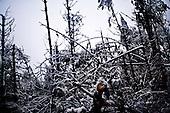 Kotowice 01.2010 Poland<br /> Kotowice were among the first places where blackouts - 12 days ago. Energy Service together with the inhabitants of Kotowice doing everything to restore the current.<br /> Three atmospheric forces: rain, snow and frost have changed into an ecological disaster the Myszkowski district in the Czestochowskie province, located 230 kilometers south of Warsaw. Almost 95% of all trees are down.Thousands of homes are left without electricity.<br /> Photo: Adam Lach / Napo Images for Newsweek Polska<br /> <br /> Kotowice byly jednym z pierwszych miejsc gdzie zabraklo pradu - 12 dni temu. Sluzba energetyczna wraz z mieszkancami z Kotowic robia wszystko by jak najszybciej przywrocic prad.<br /> Wstepnie &quot;tylko&quot; 95% scietych drzew w dwoch powiatach. 0.5 miliona metrow szesciennych zniszczonych lasow..Tysiace gospodarstw bez pradu. Wszyscy maja swiadomosc, ze na kumulacje trzech niekorzystnych .zjawisk atmosferycznych rady nie ma.Trzy zjawiska kt&oacute;re zamienily jeden z obszarow Polski w istna katastrofe ekologiczna: deszcz, snieg i szadz.<br /> Fot: Adam Lach / Napo Images dla Newsweek Polska
