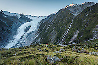 Dawn over Franz Josef Glacier and Castle Rock Hut, Westland Tai Poutini National Park, West Coast, World Heritage Area, New Zealand