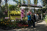 People watch the replica of The Jones and Eaton Garden with orchids during the Orchid show at the botanical garden in Bronx, New York. March 18, 2014. Photo by Kena Betancur/VIEW