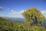 Switzerland Forest overlooking the Sea of Galilee