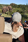 Safari guide viewing elephant, Makalali game reserve, South Africa