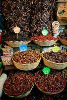 Chiles at the 20 de Noviembre food market in Oaxaca City, Oaxaca, Mexico