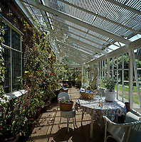 The cedar blinds cast striped shadows in this lean-to conservatory which is filled with climbing plants