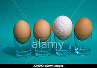 AJM593 Hen s eggs of different size Symbolic Some are bigger than most people