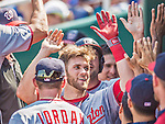 25 August 2013: Washington Nationals outfielder Bryce Harper returns to the dugout after hitting a 2-run home run, tying the game 4-4, against the Kansas City Royals at Kauffman Stadium in Kansas City, MO. The Royals defeated the Nationals 6-4, to take the final game of their 3-game inter-league series. Mandatory Credit: Ed Wolfstein Photo *** RAW (NEF) Image File Available ***