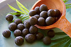 Photos &amp; pictures of the famous Brazilian acai berries the super fruit anti oxident from the Amazon. Acai berries has been used to help weight loss. Stock-fotos