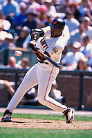 SAN FRANCISCO, CA - Barry Bonds of the San Francisco Giants bats during a game at AT&T Park in San Francisco, California on June 10, 2000. Photo by Brad Mangin