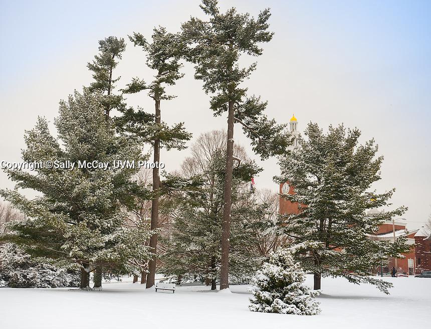 Winter UVM Campus