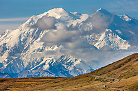 North and south summits of the Denali are visible as a tour bus filled with visitors to Denali National Park travel the gravel park road through the Thorofare flats, interior, Alaska.