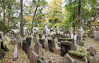 """Tombstones in the Old Jewish Cemetery, dating from 1439 to 1787, in the Josefov or Jewish Quarter of Prague, Czech Republic. The original cemetery was called """"The Jewish Garden"""" and was excavated under the Vladislavova street, New Town. Because Jewish graves cannot be moved, when the cemetery became full, more earth was put on top and the tombstones shuffled up, until there were 12 layers of tombs and approximately 12,000 tombstones presently visible, although there may be as many as 100,000 burials in all. Those buried here include Yehuda ben Bezalel or the Maharal Rabbi Low (d. 1609), Mordechai Maisel (d. 1601), David Gans (d. 1613) and David Oppenheim (d. 1736). The historic centre of Prague was declared a UNESCO World Heritage Site in 1992. Picture by Manuel Cohen"""