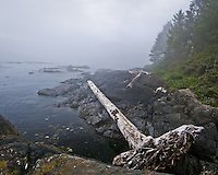 South West Vancouver Island, Canada BC