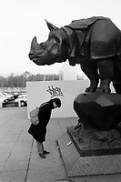 France. Ile-de-France region. Paris. A woman stands below the sculpture of a rhinoceros by Alfred Jacquemart (1824-1896) outside the Musée d'Orsay. A cast iron sculpture of a height of 2.86 meters and a a width of 2.29 meters. The Musée d'Orsay is a museum in Paris and is housed in the former Gare d'Orsay, an impressive Beaux-Arts railway station built between 1898 and 1900. The museum holds mainly French art dating from 1848 to 1915. Rhinoceros, often abbreviated as rhino, is a group of five extant species of knee-less, odd-toed ungulates in the family Rhinocerotidae. Two of these species are native to Africa and three to southern Asia. The rhinoceros family is characterized by its large size (one of the largest remaining megafauna), with all of the species able to reach one tonne or more in weight. 25.11.88 © 1988 Didier Ruef