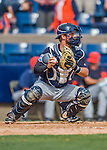 5 March 2016: Detroit Tigers catcher Austin Green in action during a Spring Training pre-season game against the Washington Nationals at Space Coast Stadium in Viera, Florida. The Tigers fell to the Nationals 8-4 in Grapefruit League play. Mandatory Credit: Ed Wolfstein Photo *** RAW (NEF) Image File Available ***