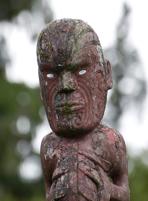 Carved Maori figure. West coast of the South Island.