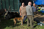 Priddy Horse Fair Somerset Uk 2009 Horse dealers.