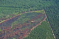 Aerial view of the Meridian Fire aftermath at the site of the fire source, Michigan, USA (2010)